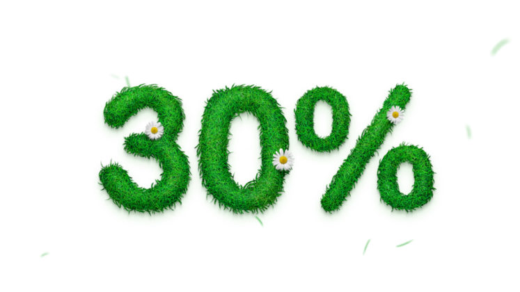 Spring Discount on Designmodo!